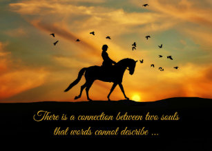 For Loss Of Horse Cards Greeting Cards More Zazzle Ca