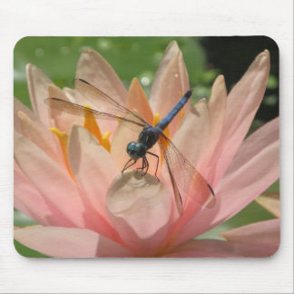 Drgonfly On Water Lily Mouse Pad