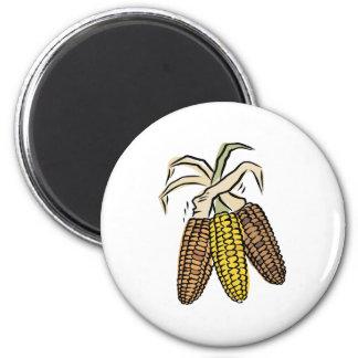 Dried Corn Magnet
