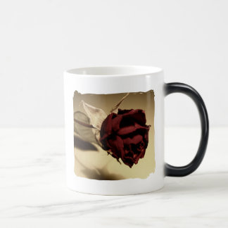 Dried Rose Photograph - Color Magic Mug