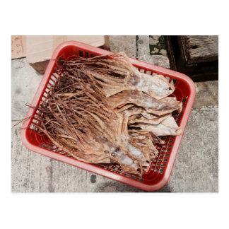 Dried Squid. Postcard