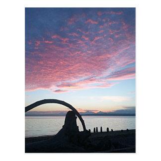 Driftwood Arch Sunset Post Card