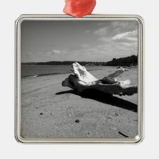 Driftwood Discovery Park Silver-Colored Square Ornament