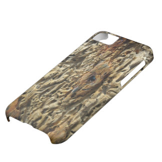 Driftwood iPhone 5C Cover