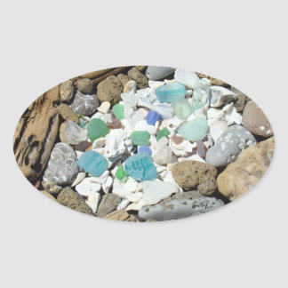 Driftwood Seashells stickers Sea Glass Fossils