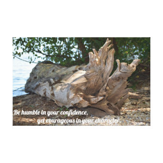 Driftwood Washed Ashore - Tennessee River Canvas Print