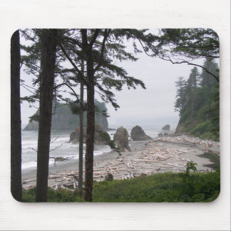DRIFTWQOD BEACH by SHARON SHAPRE Mouse Pad