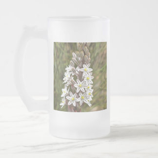 Drimia Maritima Frosted Glass Beer Mug