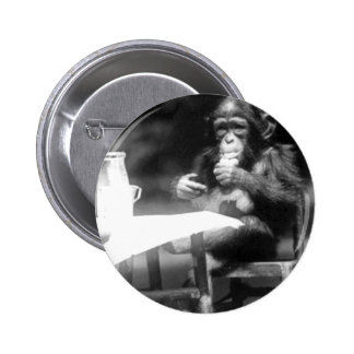 Drinking Chimpanzee Vintage National Zoo 2 Inch Round Button