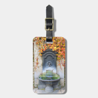Drinking fountain in fall, Hungary Luggage Tag