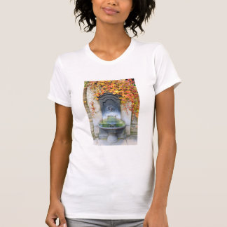 Drinking fountain in fall, Hungary T-Shirt
