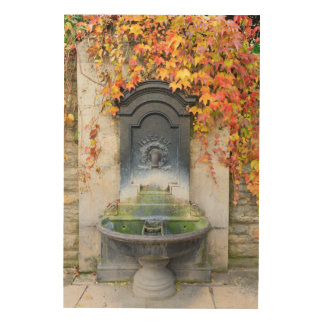 Drinking fountain in fall, Hungary Wood Canvas