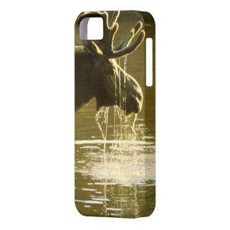 Drinking Moose - CaseMate iPhone 5 Cover