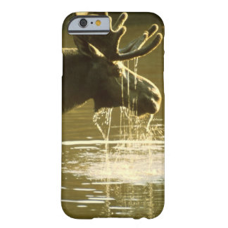 Drinking Moose - iPhone 6 case