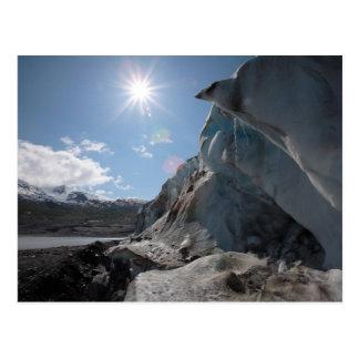 Dripping In the Sun Postcard