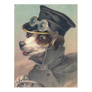 """""""Driver Dog"""" Vintage Illustration Postcard"""