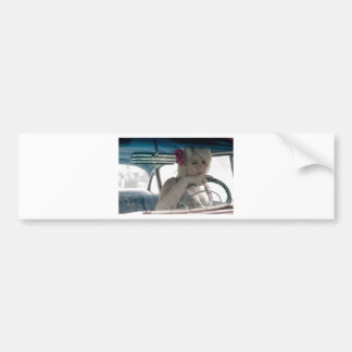 Driving Doris Bumper Sticker
