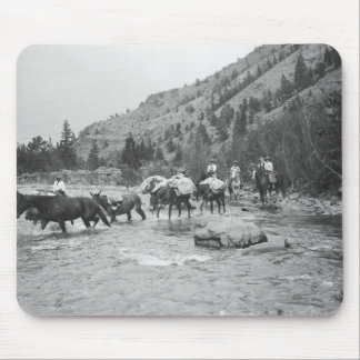 Driving pack mules across a river mouse pad