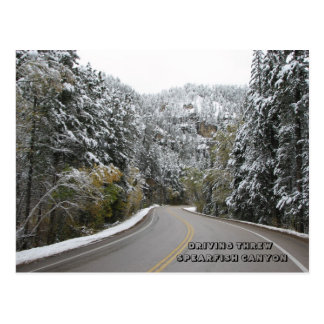 DRIVING THREW SPEARFISH CANYON - Customized Postcard