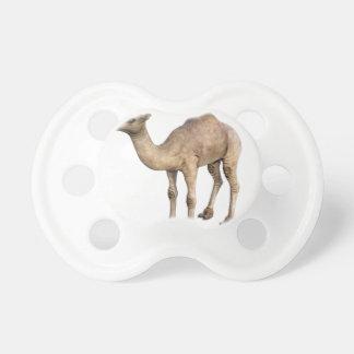 Dromedary Camel Pacifier