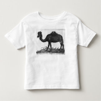 Dromedary, from 'Historial Animalium' Toddler T-shirt