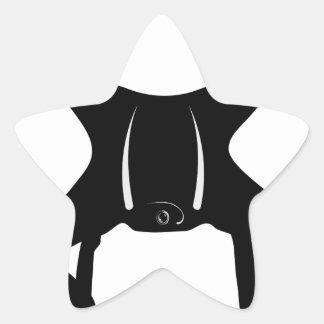 Drone Flying Star Sticker