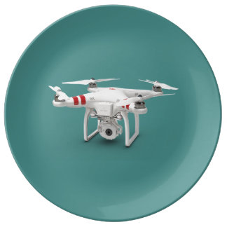 Drone phantom porcelain plate