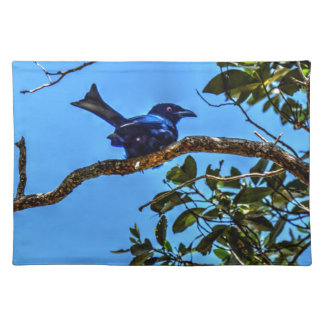 DRONGO RURAL  QUEENSLAND AUSTRALIA ART EFFECTS PLACEMAT