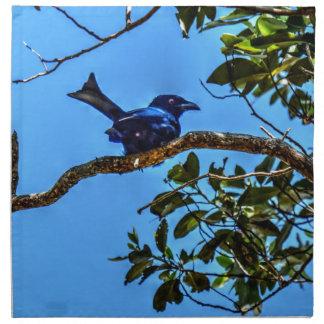 DRONGO RURAL  QUEENSLAND AUSTRALIA ART EFFECTS PRINTED NAPKIN