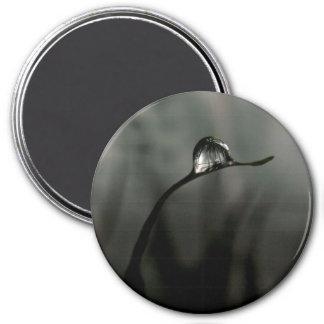 droplet magnet