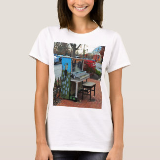 Dropping by for a Ditty in Dublin T-Shirt