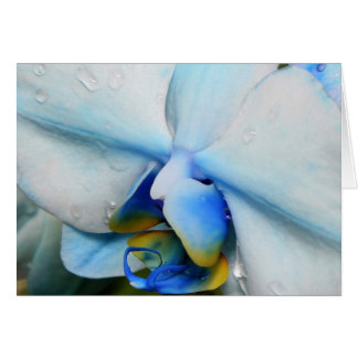 Drops on Blue Orchid Card