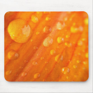 Drops On Bright Orange Flower Mouse Pad
