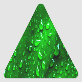 drops on green leaf triangle stickers
