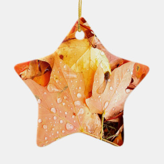 Drops on Leaves Ceramic Star Ornament