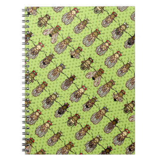 Drosophila Fruit Fly Genetics - mutants - Lime Notebook