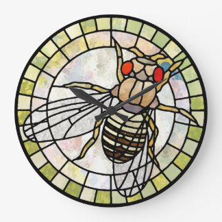 Drosophila Wall Clocks
