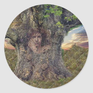 Druid In Trees Classic Round Sticker