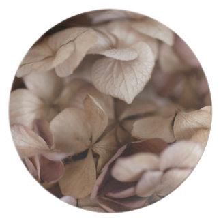 Dry Flowers Plate