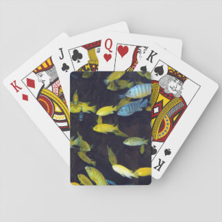 """""""Dry Hands"""" Playing cards"""