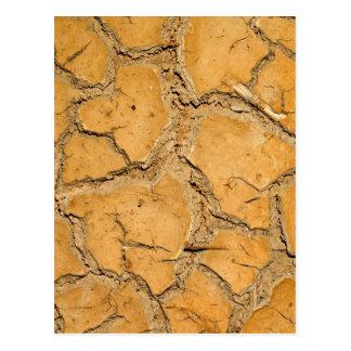 dry  soil  / crack earth postcard