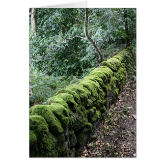 Dry stone wall covered in Moss Card