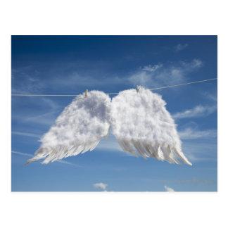 Drying angel's wings. postcard