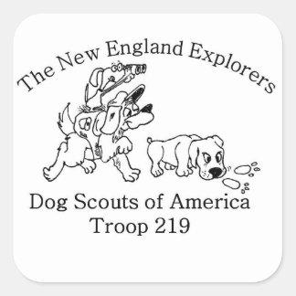 DSA Troop 219 stickers