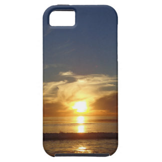 DSC00801.JPG iPhone 5 CASE