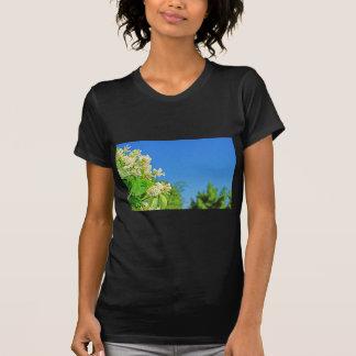 DSC08709.jpg T-Shirt