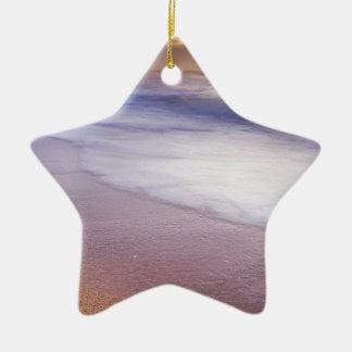 _DSC5698-Edit Ceramic Ornament