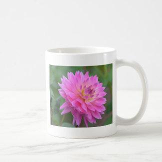 DSC_0048.00 COFFEE MUG
