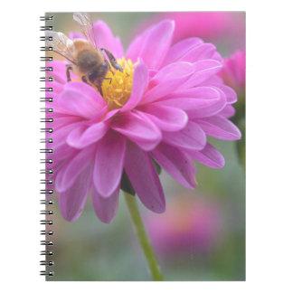 DSC_0084.00 SPIRAL NOTE BOOKS