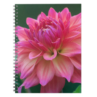 DSC_0186.NEF.000 SPIRAL NOTE BOOK